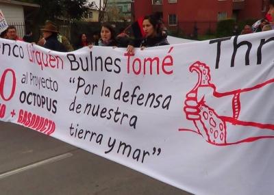 OCTOPUS: ALCANCES NEGATIVOS DEL PROYECTO   DIARIO OJOS DE AGUILA