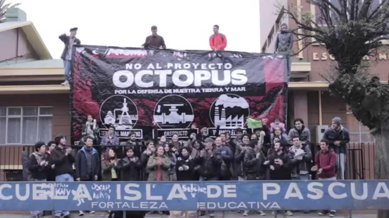 OCTOPUS: ALCANCES NEGATIVOS DEL PROYECTO | DIARIO OJOS DE AGUILA